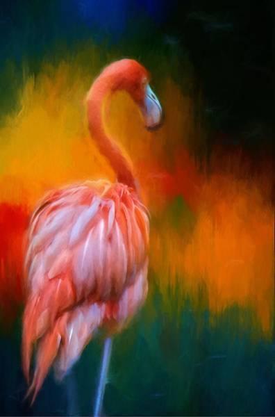 Photograph - Flamingo Splendors by Alice Gipson