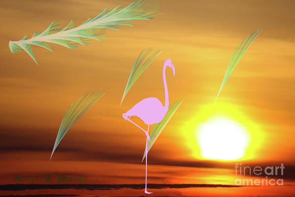 Digital Art - Flamingo Visions by Donna L Munro