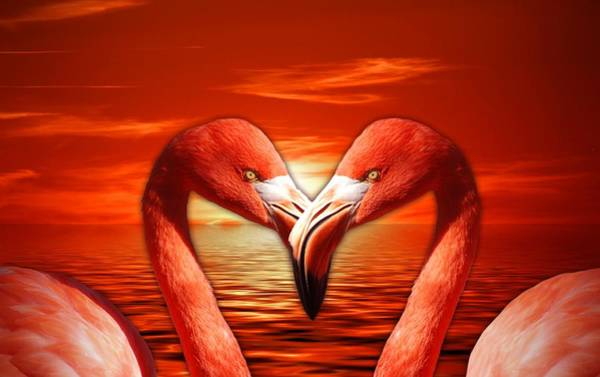 Painting - Flamingoes Lovers At Sunset by Joy of Life Art Gallery