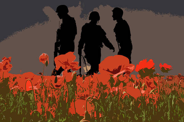 Remembrance Photograph - Flanders Fields 6 by Smart Aviation