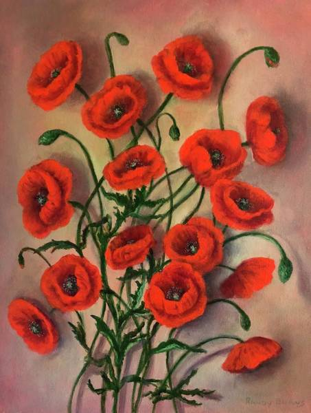 Flander Poppies Art Print