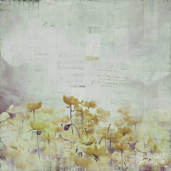 Wall Art - Photograph - Flanelle 22 by Variance Collections