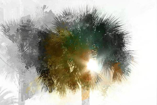 Photograph - Flared Textured Palm by Alice Gipson