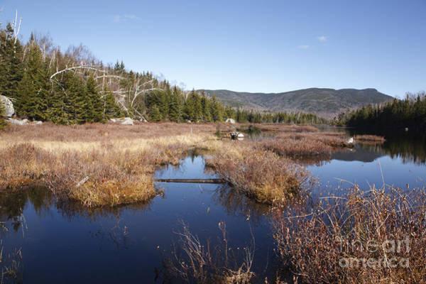 Photograph - Flat Mountain Ponds - Sandwich Wilderness White Mountains Nh by Erin Paul Donovan
