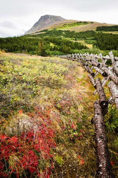 Photograph - Flattop In Autumn by Tim Newton