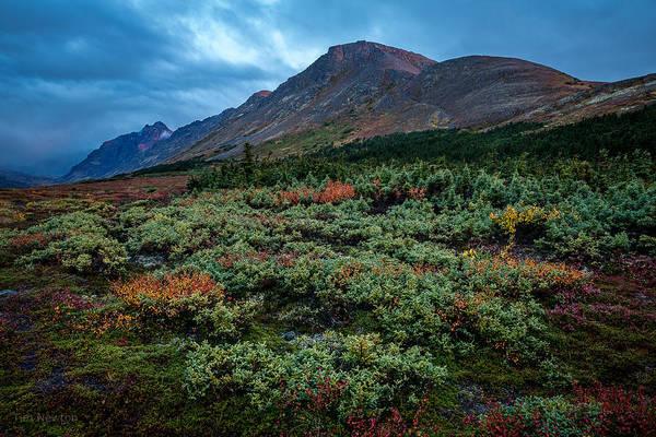Photograph - Flattop In The Autumn Rain by Tim Newton