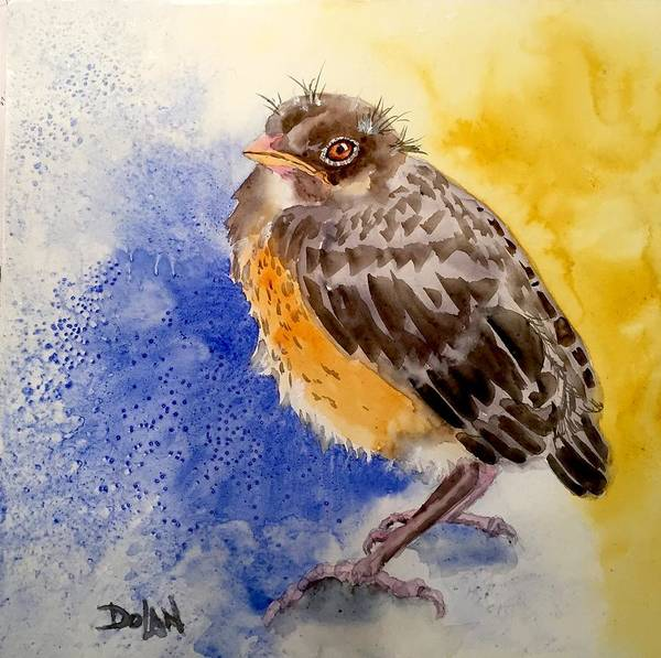 Painting - Fledgling Robin by Pat Dolan