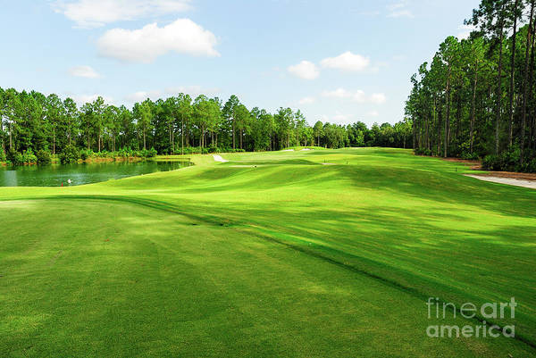Golf Green Photograph - Fleming Island Golf Club by Paul Quinn