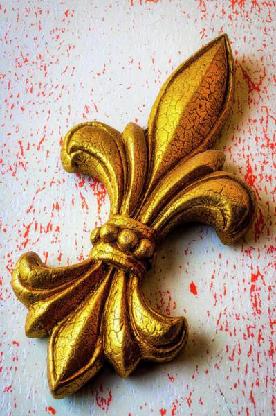 Wall Art - Photograph - Fleur De Lis by Garry Gay