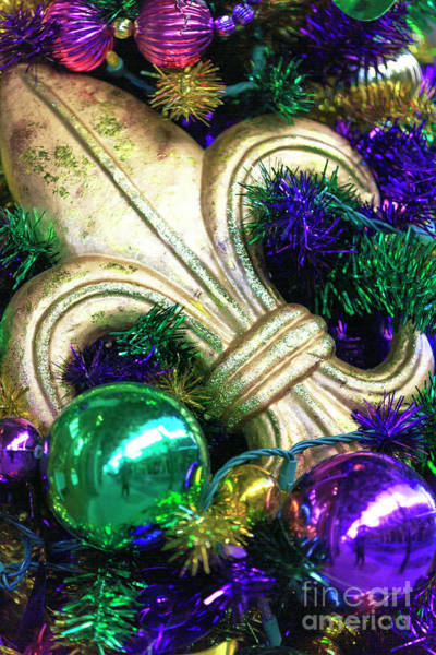 Photograph - Fleur De Lis On The Christmas Tree New Orleans by John Rizzuto