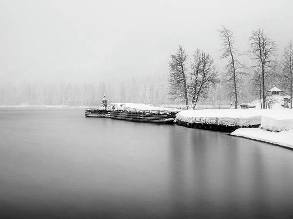 Wall Art - Photograph - Fleur Du Lac by Steve Spiliotopoulos