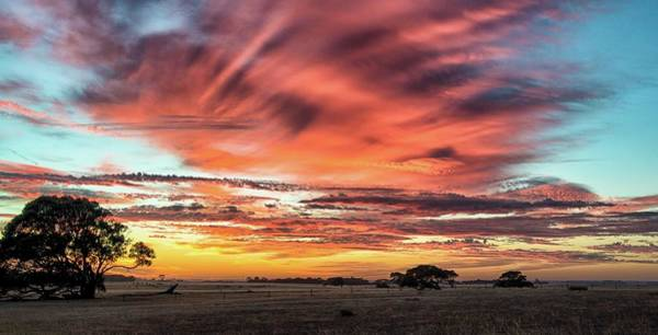 Photograph - Fleurieu Rural Sunrise by Grant Petras