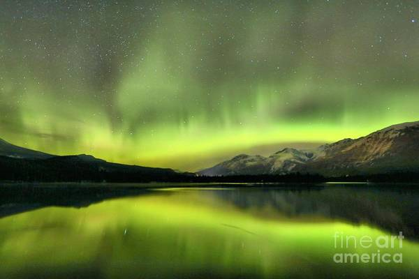 Photograph - Flickers In The Canadian Sky by Adam Jewell