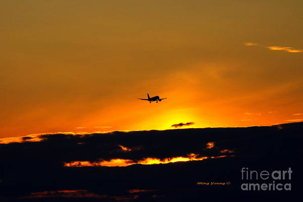 Vancouver International Airport Wall Art - Photograph - Flight At Dusk by Ming Yeung