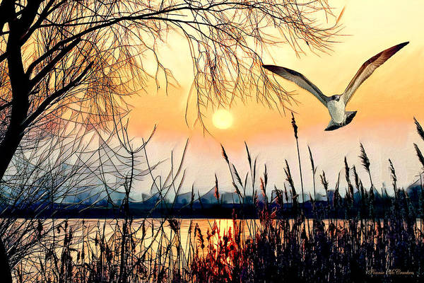 Digital Art - Flight Of The Hawk by Pennie McCracken