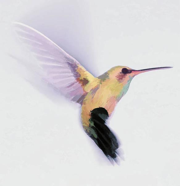 Digital Art - Flight Of The Hummingbird by Barbara A Lane
