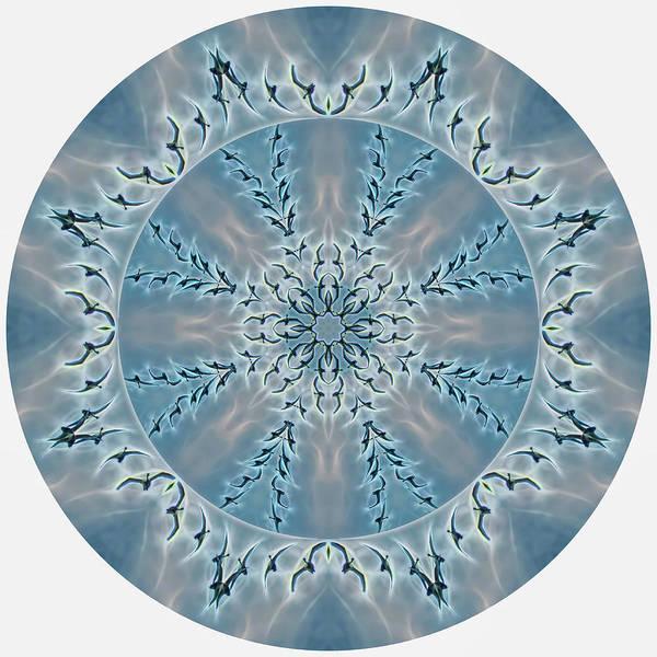 Digital Art - Flight Of The Tundra Swan Mandala by Beth Sawickie