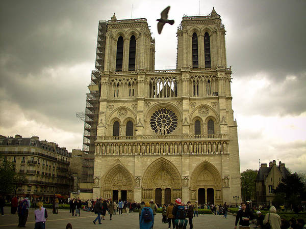 Photograph - Flight Over Notre Dame by Mark Currier