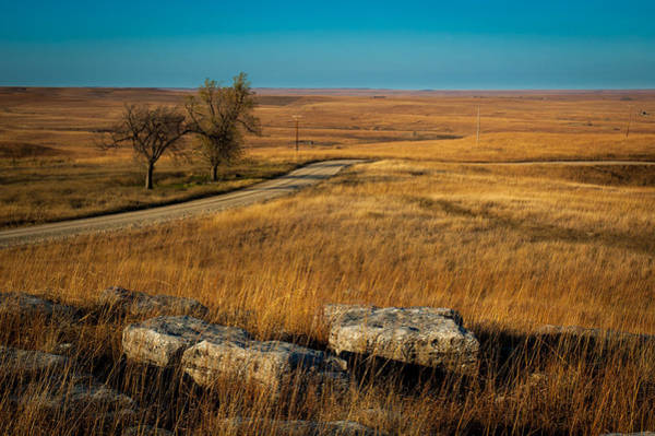 Photograph - Flint Hills Two Trees by Jeff Phillippi