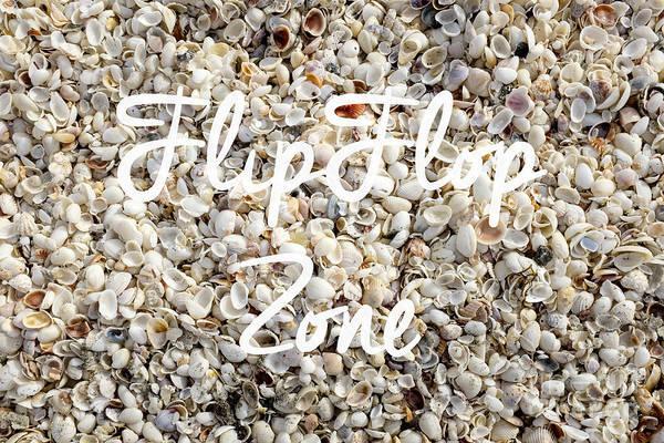 Flip Flops Photograph - Flip Flop Zone Seashell Background by Edward Fielding