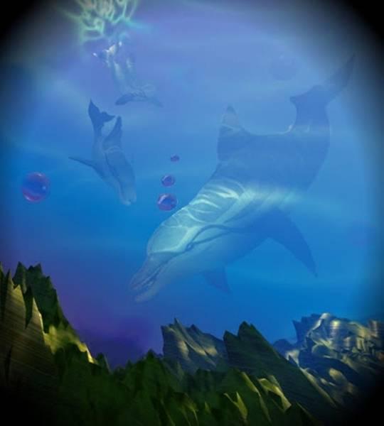 Digital Art - Flipper Three by Darren Cannell