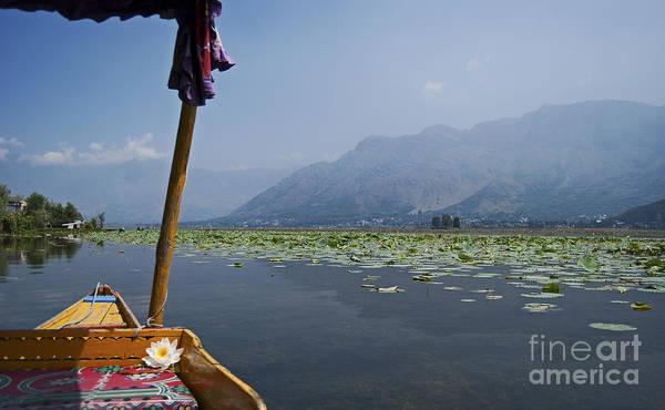Dal Lake Photograph - Floating Adventure... by Nina Stavlund