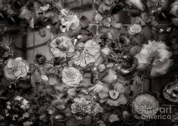Photograph - Floating Camellia Blossoms by Ann Jacobson