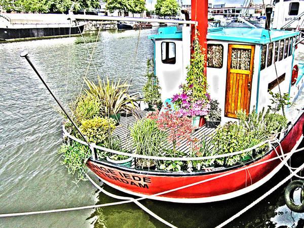 Photograph - Floating Garden by Brian Roscorla