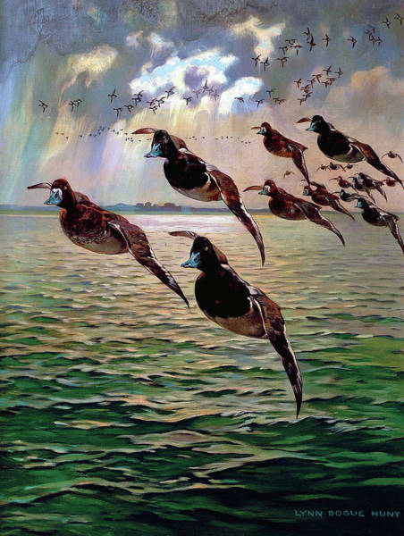 Painting - Floating In by Lynn Bogue Hunt