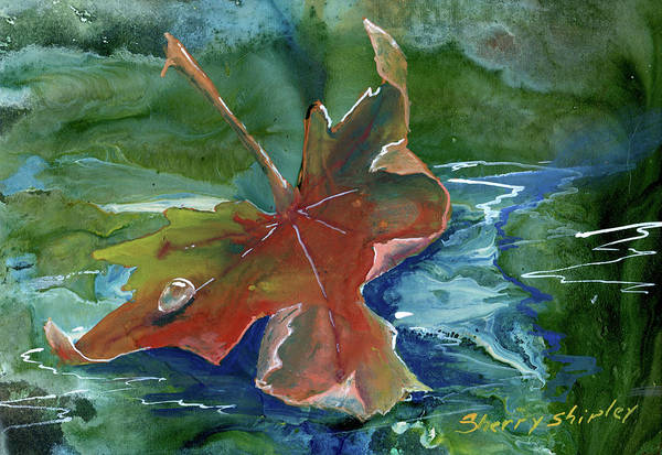 Painting - Floating Leaf by Sherry Shipley