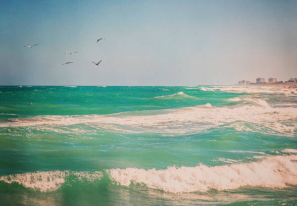 Photograph - Flocking To The Beach by Jody Lane