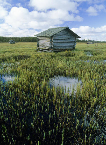 Sauna Wall Art - Photograph - Flooded Meadow With Sauna Hut by Bjorn Svensson