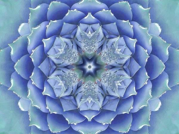 Digital Art - Flora Muse Mandala by Diane Lynn Hix