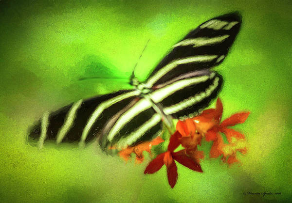 Yard Photograph - Floral Butterfly by Marvin Spates