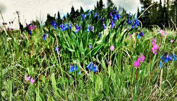 Digital Art - Floral Canvas by Susan Kinney