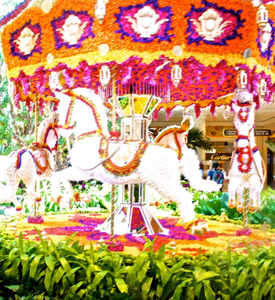 Wall Art - Photograph - Floral Carousel Display by Art Spectrum