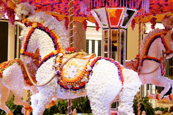 Wall Art - Photograph - Floral Carousel  by Art Spectrum