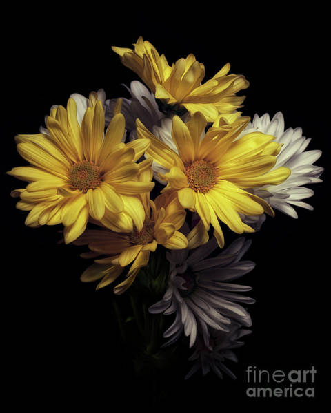 Photograph - Floral Cross by Tim Wemple