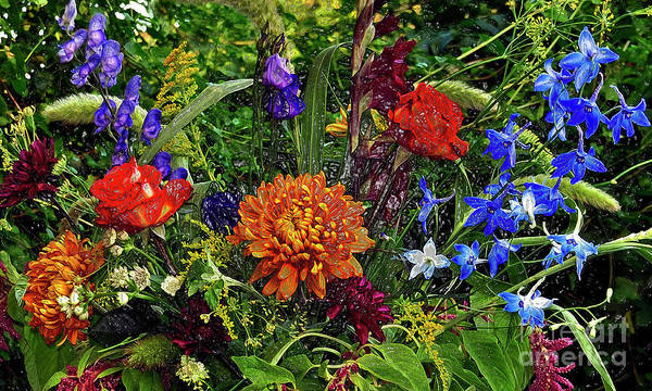 Photograph - Floral Dream Of August by Silva Wischeropp