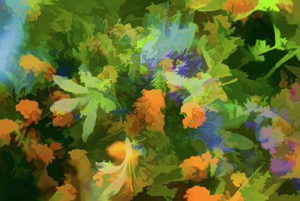 Multiple Exposure Digital Art - Floral Dreams 2 Abstract  by Linda Brody