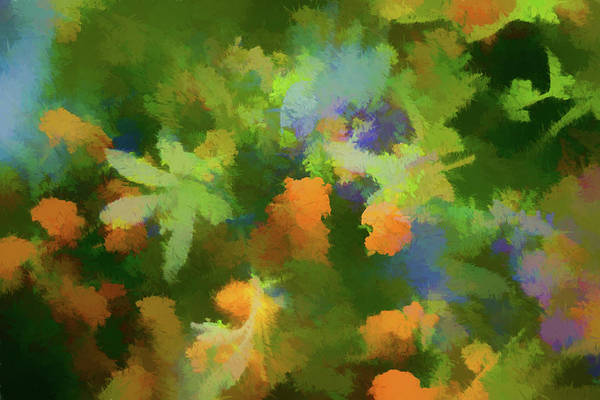 Multiple Exposure Digital Art - Floral Dreams 3  Abstract  Impression   by Linda Brody