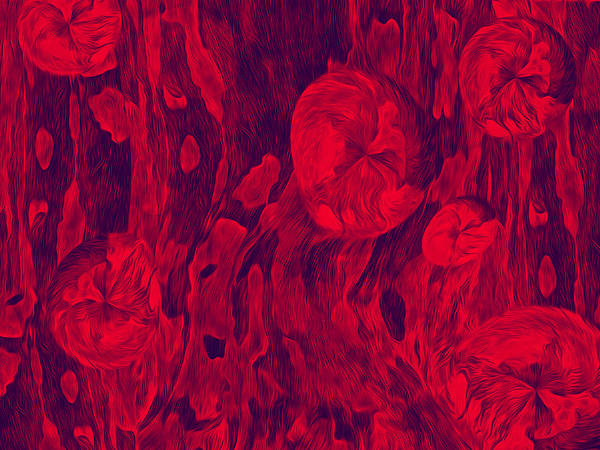 Digital Art - Floral Effusion In Red And Black by Lynda Lehmann