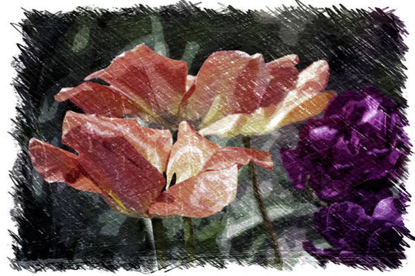 Doona Mixed Media - Floral Spring Tulips 2017 Pa 02 by Thomas Woolworth