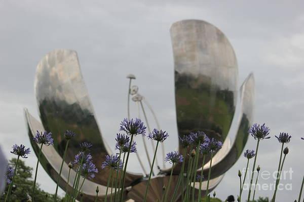 Photograph - Floralis Generalis by Wilko Van de Kamp
