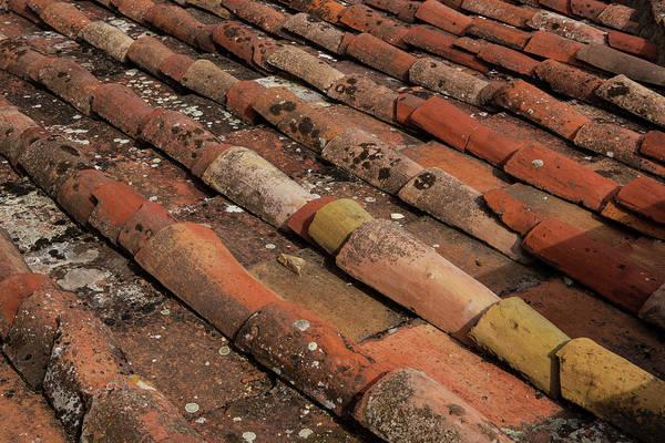 Wall Art - Photograph - Florence Rooftop Tiles by Iris Richardson