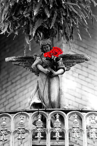 Wall Art - Photograph - Flores Para Los Muertos In New Orleans by John Rizzuto