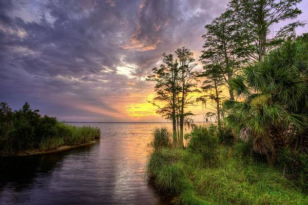 Photograph - Florida Beyond The Beaches by JC Findley