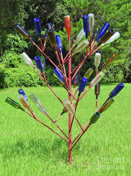 Idealistic Wall Art - Photograph - Florida Bottle Tree by D Hackett