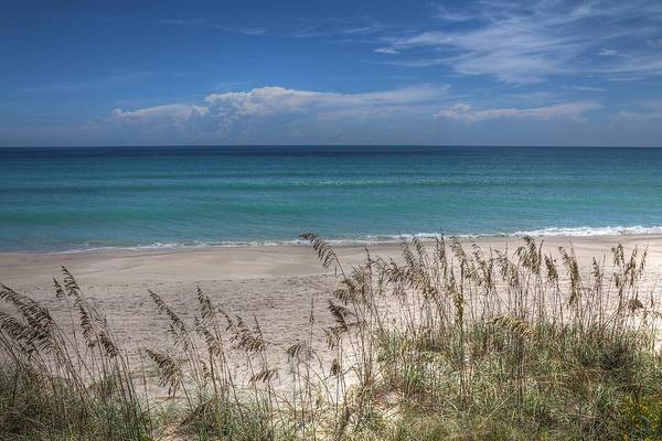 Photograph - Florida Coastal Beaches And Sea Oats by Carol Montoya