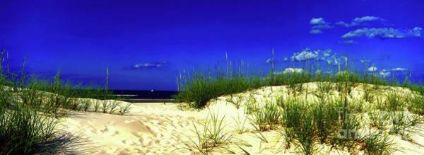 Photograph -  Florida Daytona Beach Sand Dunes by Tom Jelen